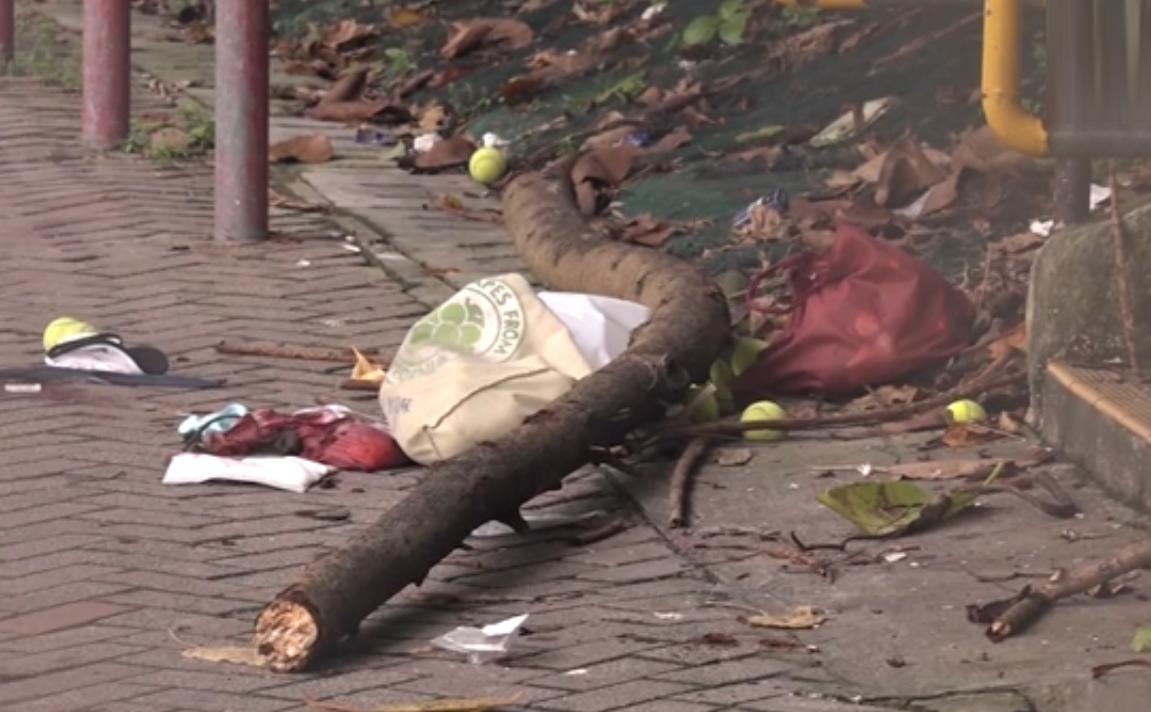 香港一外傭遭30公斤樹枝擊中亡
