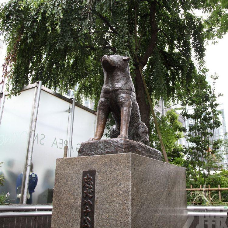 忠犬八公銅像製作者安騰士病逝