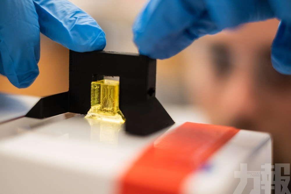 3D打印複製人類器官精細血管系統