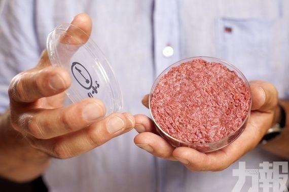 中國首款「人造肉」將於9月深圳上市