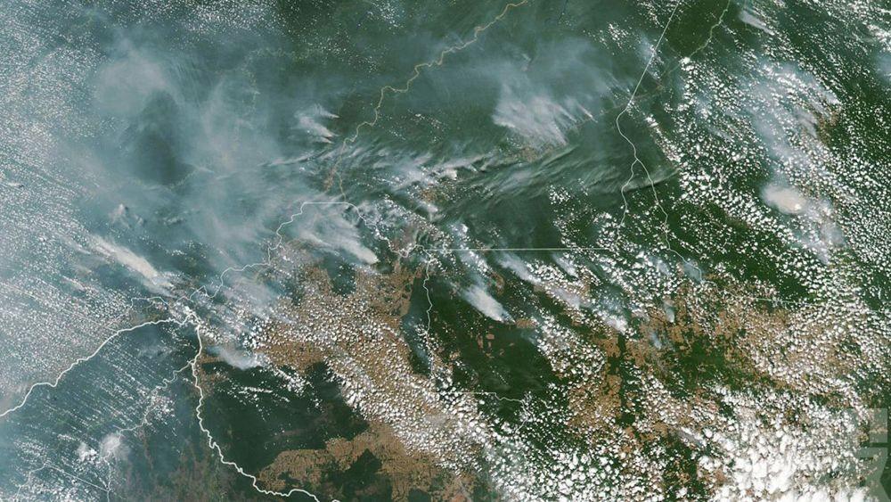 【破紀錄】亞馬遜森林今年大火逾7萬宗