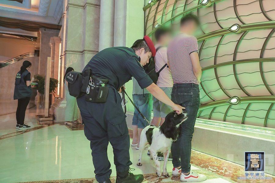 澳門警方打黑拘捕917人