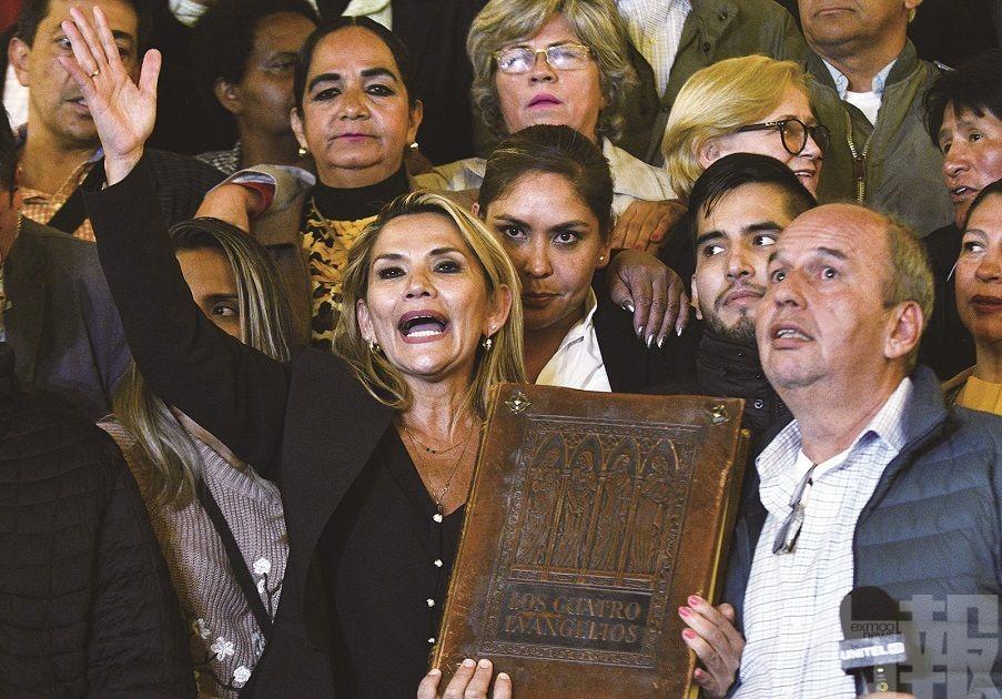 玻利維亞副議長接任臨時總統