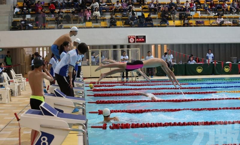 松森白鷺泳手刷新三項大會紀錄