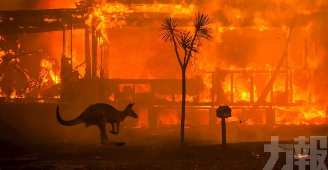 標普:大火並未危及澳洲AAA評級