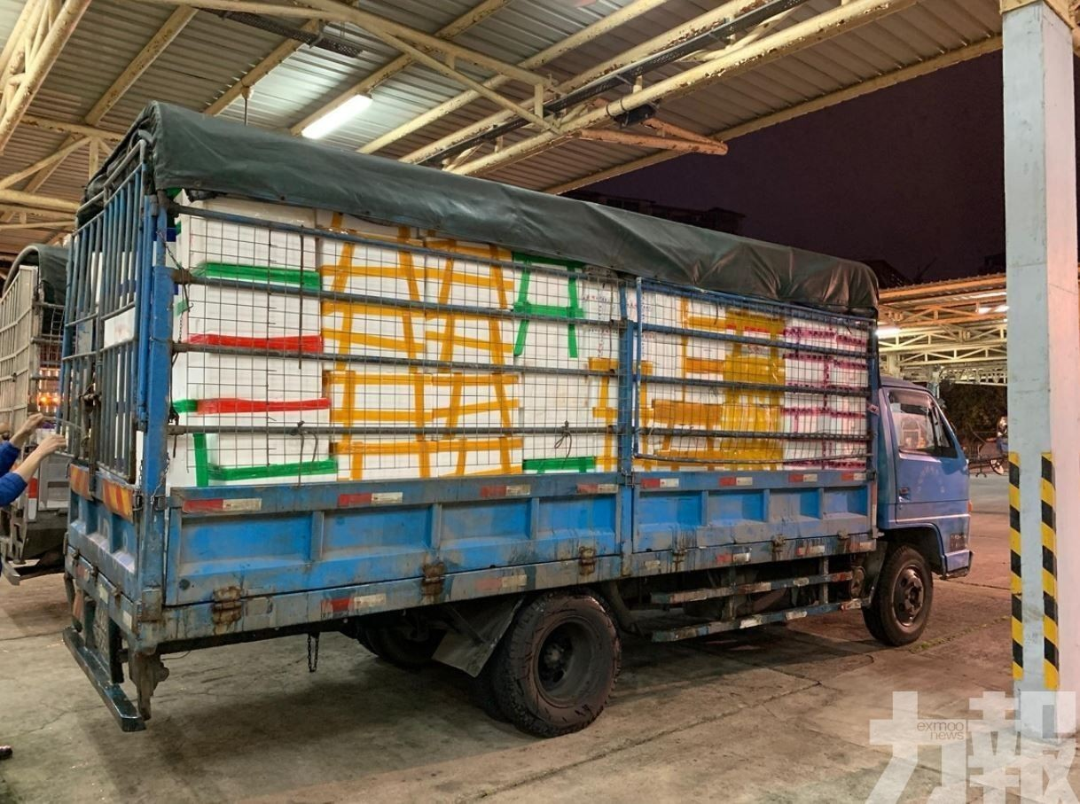鮮活食品運輸外僱將獲豁免遵守新入境措施