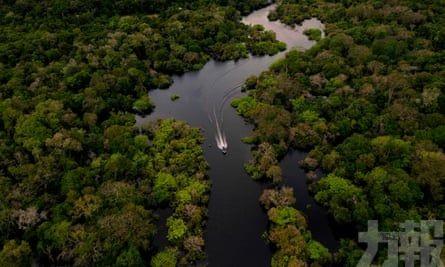 【新冠肺炎】亞馬遜雨林土著首現確診