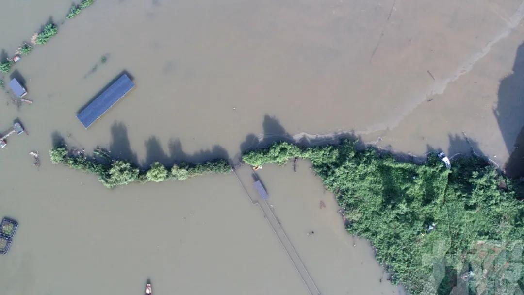 江西潘陽湖水位超1998年歷史極值