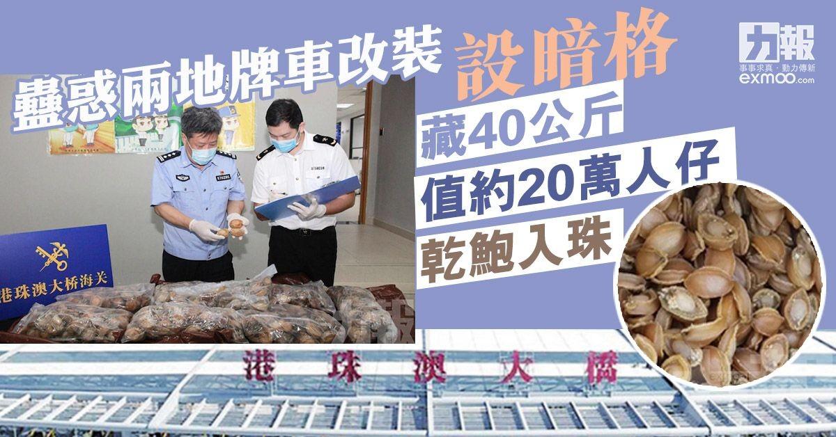 藏40公斤值約20萬人仔乾鮑入珠