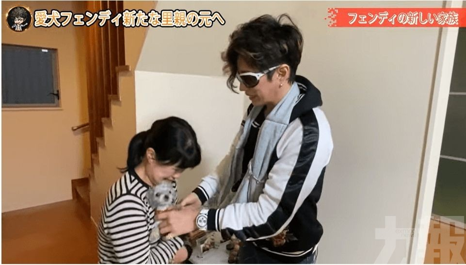 濱崎步痛失22歲愛犬Choco