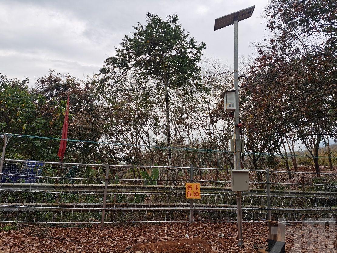 傳雲南建成500公里鐵絲圍欄