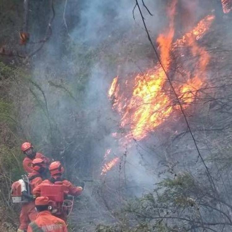 雲南大理山火仍有餘火