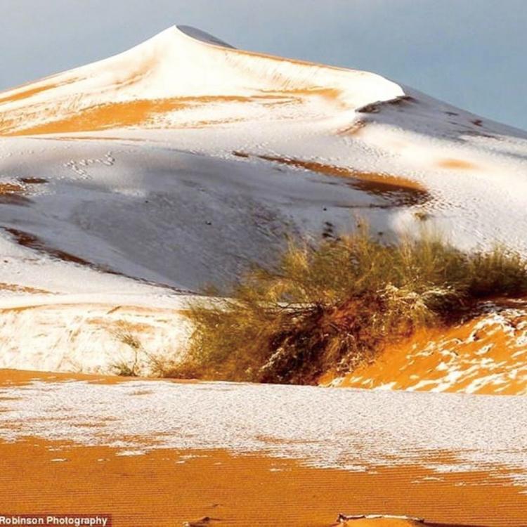 40厘米積雪蓋黃沙