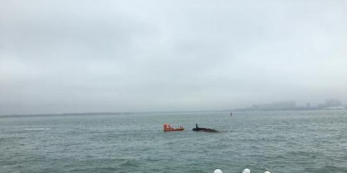 粵海安新港航道兩船相撞 兩人失蹤