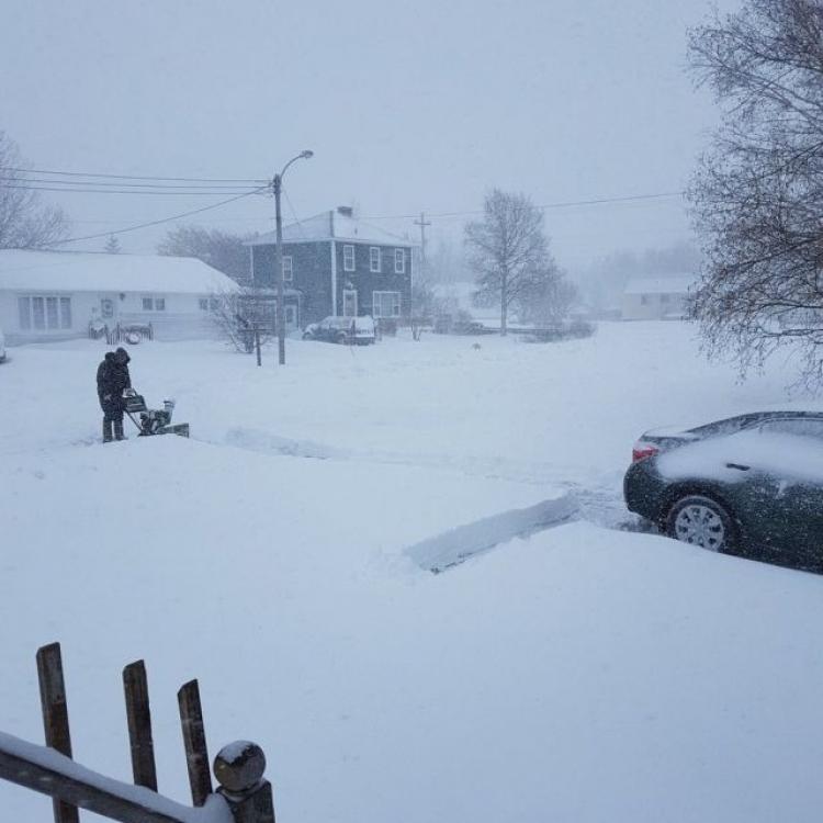 加拿大紐芬蘭落雪 積雪達30厘米