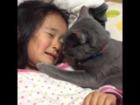 貓咪這樣安慰她