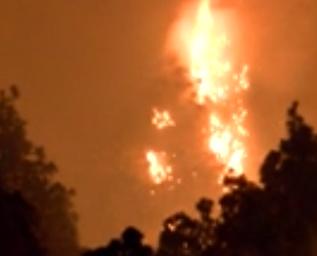 西班牙森林大火一工人死亡