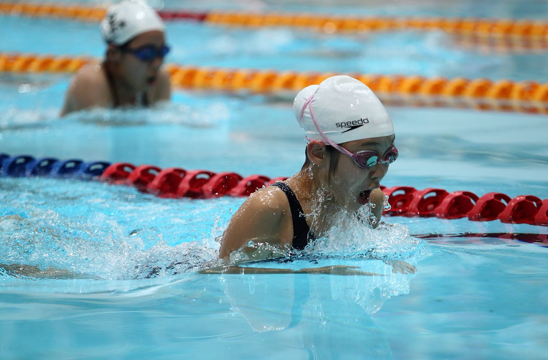 澳門短池泳賽明日揭戰幔