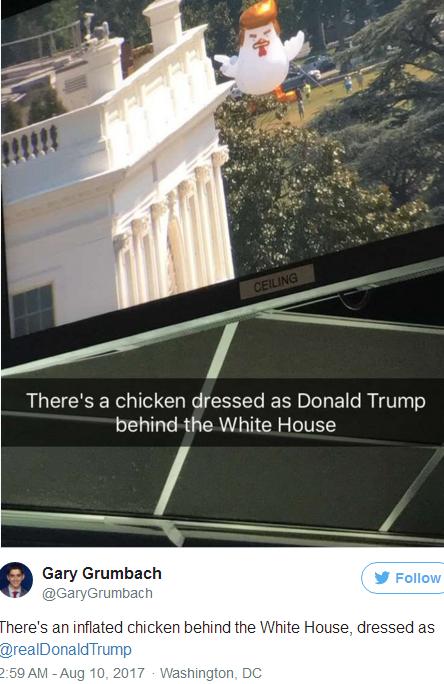 白宮驚現「唐老雞」