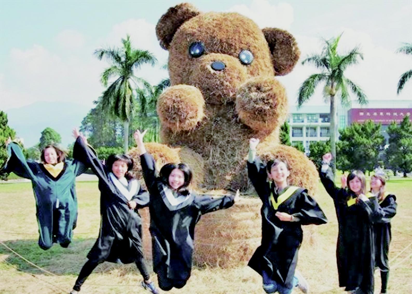 屏科大牧草泰迪熊