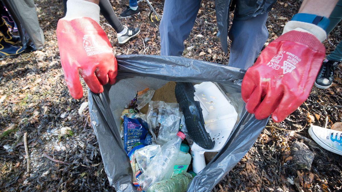 科學家研「食塑細菌」 分解塑膠快兩成