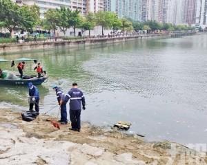 筷子基北灣湧現死魚 海事局已清理800公斤