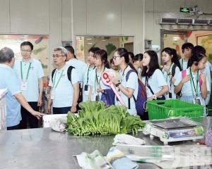 訪供港澳蔬菜種植基地