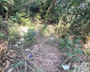 市政署呼籲市民愛護自然環境