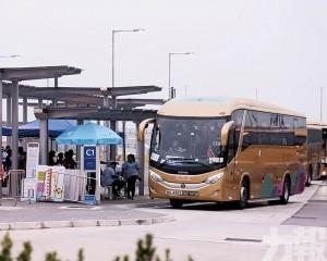 十日僅228人乘金巴由港來澳
