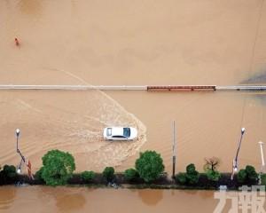 廣西等八省暴雨釀災