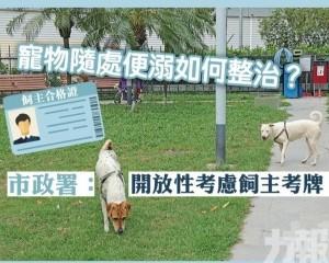 市政署:開放性考慮飼主考牌
