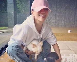 濱崎步痛失22歲愛犬