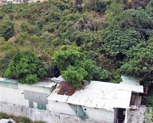政府收回氹仔盧廉若馬路國有土地