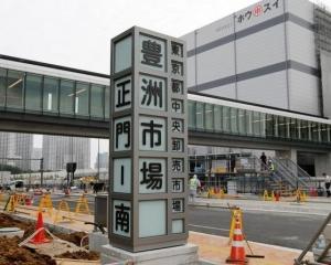 東京豐洲市場有望10月啟用