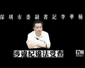 深圳市委副書記李華楠涉違紀違法受查