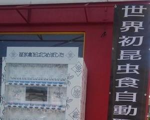 【奇趣日本】熊本縣現食用昆蟲自動販賣機