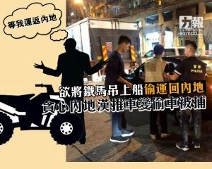 貪心內地漢推車變偷車被捕