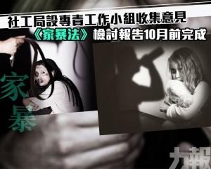《家暴法》檢討報告10月前完成