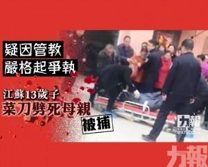 江蘇13歲子菜刀劈死母親被捕