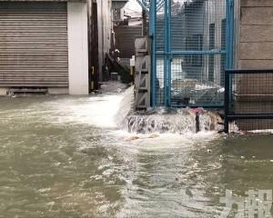 6月起最多有7個颱風來襲