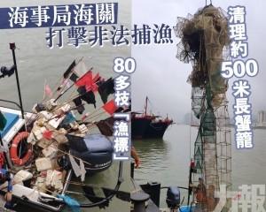 清理約500米長蟹籠