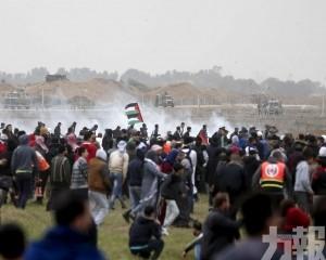 埃及協調下停火