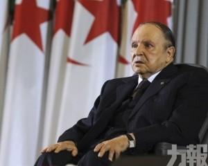 【執政廿載】阿爾及利亞總統月底辭職