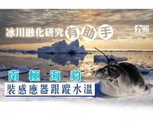 南極海豹裝感應器跟蹤水溫