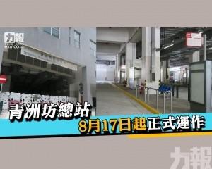 青洲坊總站8月17日起正式運作