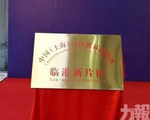 上海自貿區臨港新片區正式揭牌