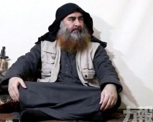 IS首證巴格達迪已死