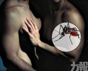 西班牙發現由性行為感染登革熱個案
