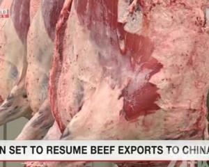 據報日本牛肉最快明年恢復出口中國