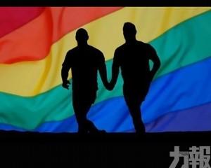 團體倡同性同居納家暴法保障